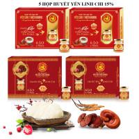 5 Hộp yến huyết linh chi 15% (6 lọ/hộp) - Tặng 4 hộp yến huyết linh chi 15% (6 lọ/hộp) + 2 chai mật ong Honey An 380gr + 8 gói cháo yến Thiên Hoàng (vị ngẫu nhiên)